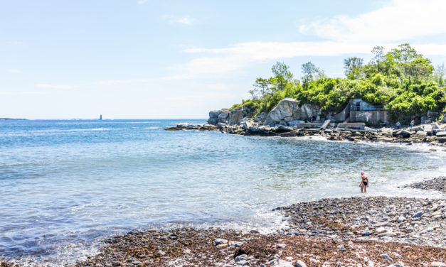 A Guide To Spearfishing In New England