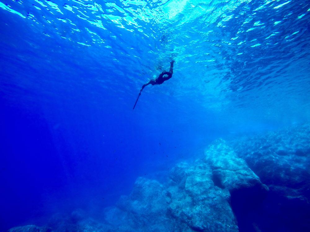 Okinawa spearfishing laws