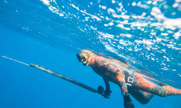Top 10 Spearfishing Tips For Beginners