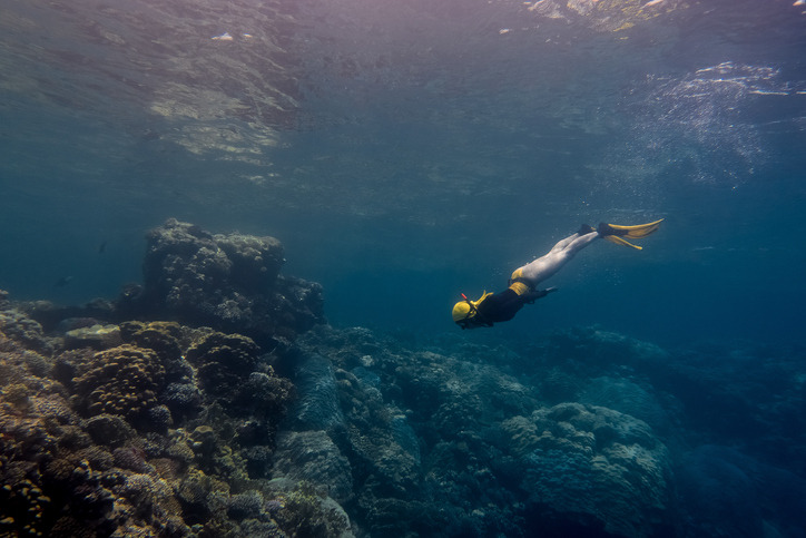 How To Hold Your Breath Longer While Spearfishing