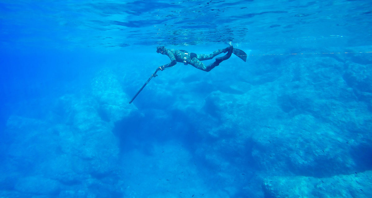 Shallow Water Spearfishing Tips: 10 Things to Know