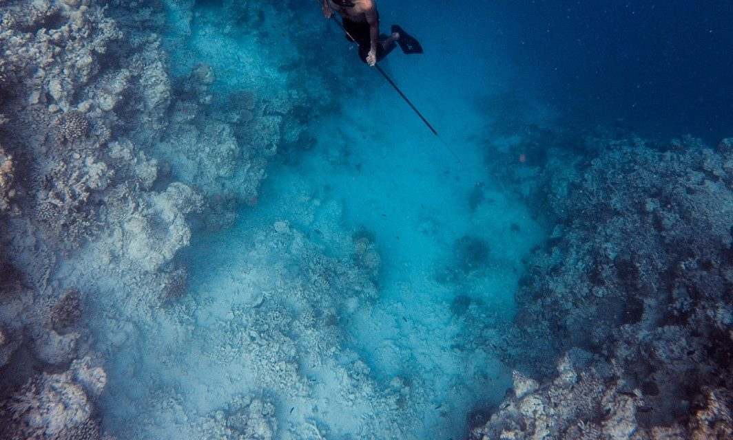5 Things to Know About Spearfishing From a Kayak
