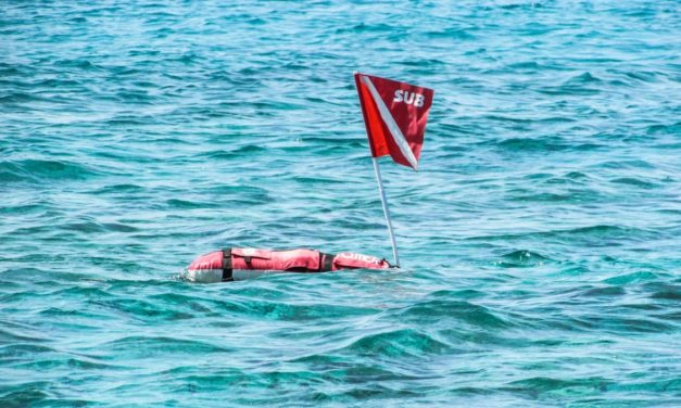 How To Choose The Best Spearfishing Float: With Top Recommendations