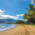 The Ultimate Guide To Spearfishing In Hawaii
