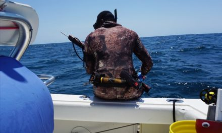 A Guide To Blue Water Spearfishing