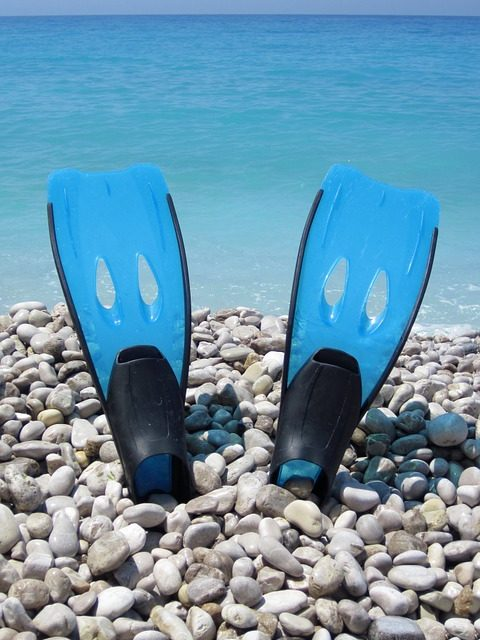 The 6 Best Freediving Fins [Freediving Fins Buying Guide]