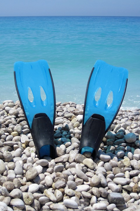 The 6 Best Freediving Fins [Freediving Fins Buying Guide