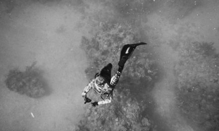 A Guide To Freediving Gear [For The Beginner]