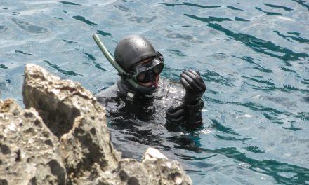 Best Spearfishing Gloves