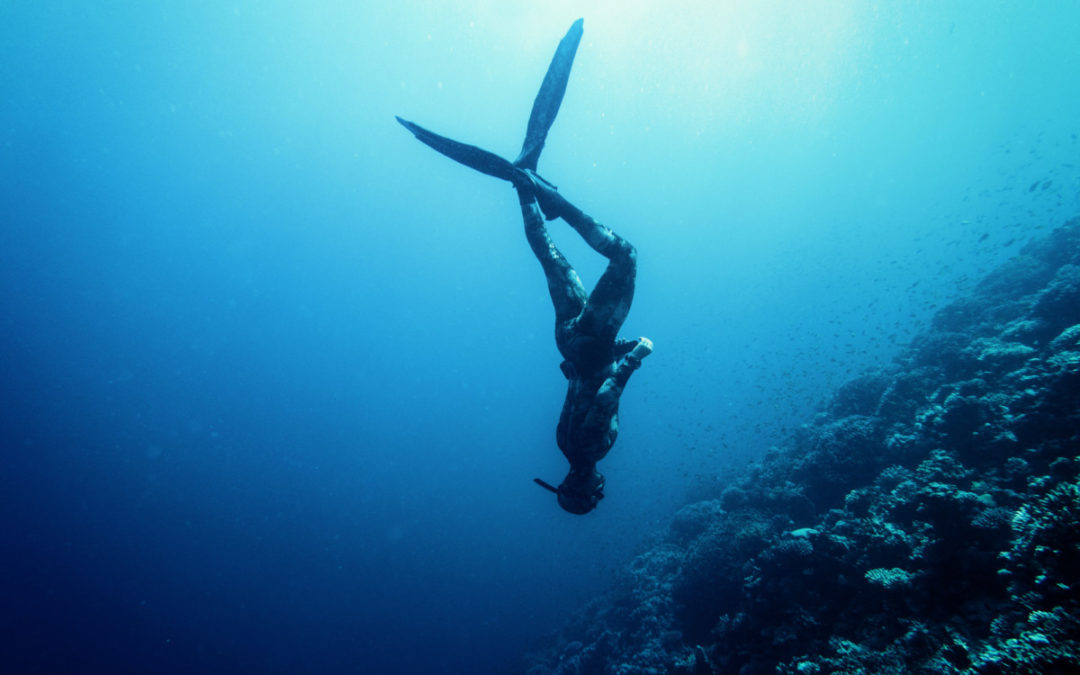 Malta Spearfishing: The Best Places to Dive – Plus Tips for Fishing There