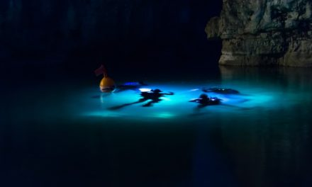 How To Spearfish at Night – A Guide For Spearos