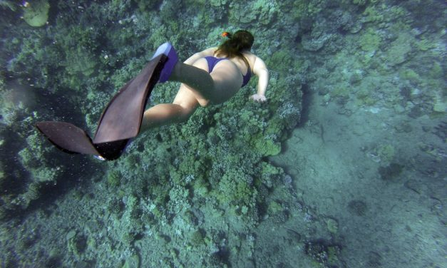 Why is That Spearfishing Fin So Huge?