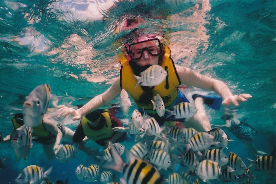 The Best Snorkeling Vests – The Ultimate Buyer's Guide