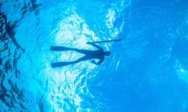 The Best Spearfishing Fins: A Buying Guide