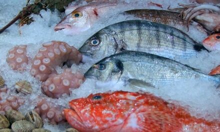 What Are The Best Tasting Saltwater Fish?